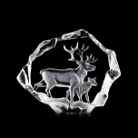 WILDLIFE Reindeer and calf Limited Edition