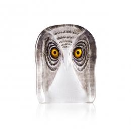 Mats Jonasson Crystal - WILDLIFE PAINTED - Owl medium - 34105