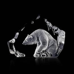 WILDLIFE Polar bear