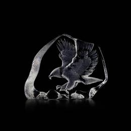 Mats Jonasson Crystal - WILDLIFE -  Northern Bald Eagle in flight - 33894